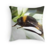 Bumble Bee Throw Pillow