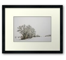 Trees in the mist and snow Framed Print