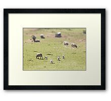 Looking for mum Framed Print