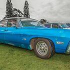Impala by Neil Bushby