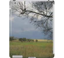 Branches in the wind iPad Case/Skin