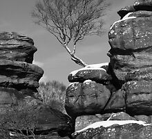 Brimham Rocks, North Yorkshire by jonAt