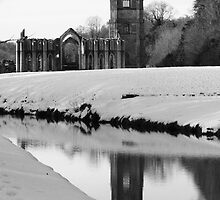 Fountains Abbey, North Yorkshire by jonAt