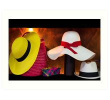 Panama Hats Are Made In Ecuador III Art Print