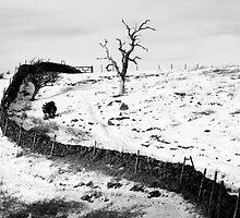 Winter scene by jonAt