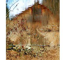Perception... Photographic Print