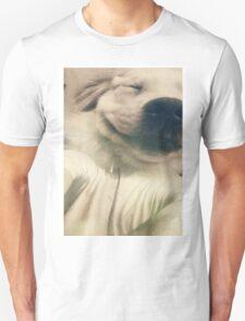 Be more Dog T-Shirt