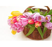 Bouquet of tulips in a basket Photographic Print