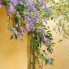 Purple Wreath Profusion by Marilyn Cornwell