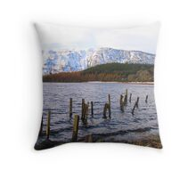 Snowy-Ness Throw Pillow