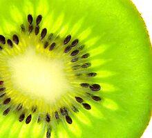 Kiwi by jonAt