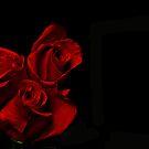Rose Trio by Charles Adams