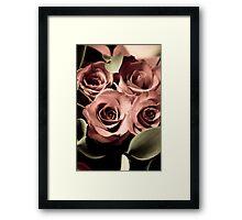 Aged Roses - I Framed Print