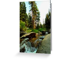 Upstream in Sequoia Greeting Card