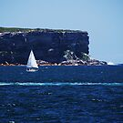 sailing by Susan6110