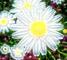Psychadelic Daisies by Sanguine