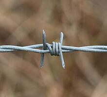 Barbed Wire by GlesgaGeek