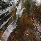 Moors water/ Paula Cattermole by paula cattermole artinapuddle