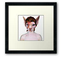 Aladdin Sphynx Framed Print
