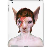 Aladdin Sphynx iPad Case/Skin