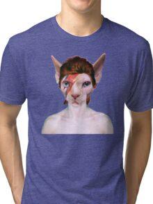 Aladdin Sphynx Tri-blend T-Shirt