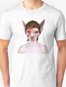 Aladdin Sphynx Unisex T-Shirt