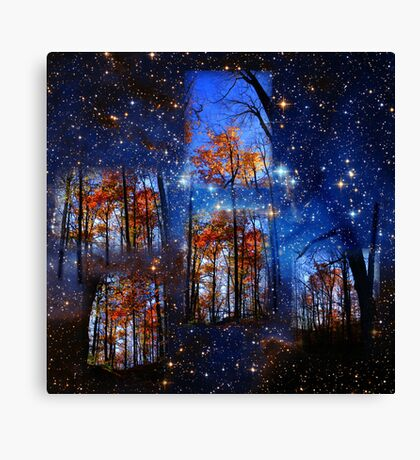 The Face of Forever Canvas Print