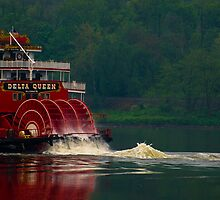 River Life by Tony  Bazidlo