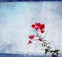Painted Flower by keladams
