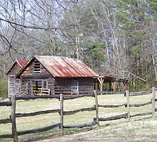 An Old slavery house,GA. by KraZyGuy78