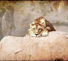 Resting by keladams