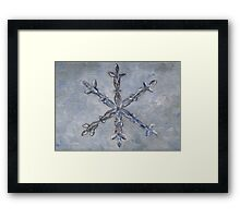 S is for Snowflake Framed Print