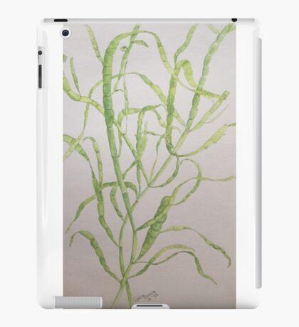 Like Rivers of Ribbons iPad Case/Skin