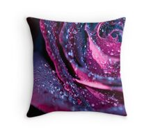 Black Velvet Throw Pillow