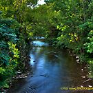 Downstream HDR by PJS15204