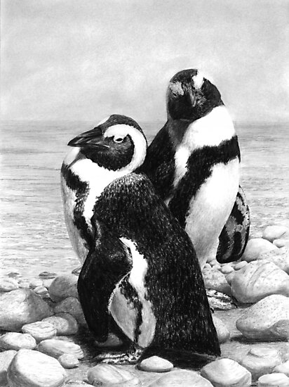 A Pair of Penguins - African Penguins by Heather Ward