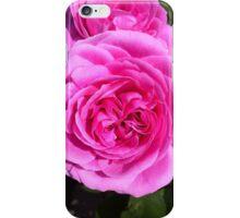 Beautiful pink rose iPhone Case/Skin