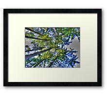 overheads Framed Print