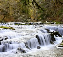 Falls along Sweet Creek by aussiedi
