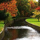 Autumn Winding Brook by TerrieK
