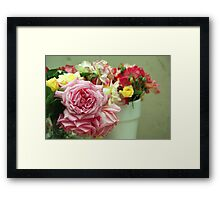 A selection from my garden... Framed Print