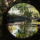 Brook Tunnel Reflection by TerrieK
