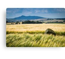 Bennachie, from Bourtie Canvas Print