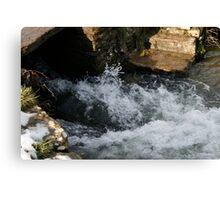 Water rushing Through  Canvas Print