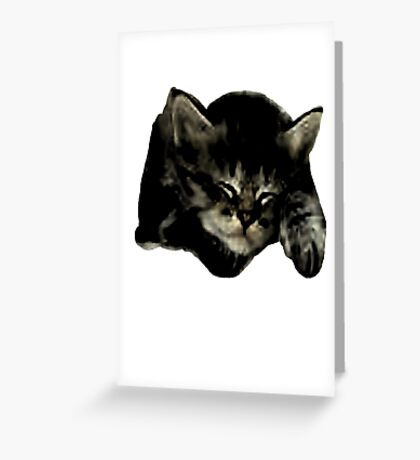 Cats and kittens Greeting Card