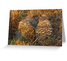 In the Burrow Greeting Card