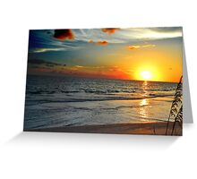 Sunset And Sea Wheat Greeting Card