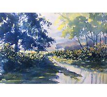 """Strensall Common"" - demo painting Photographic Print"