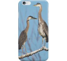 I Was Here First iPhone Case/Skin