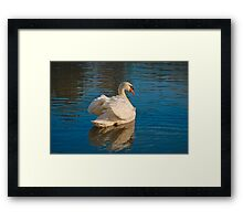 These Are My Wings Framed Print